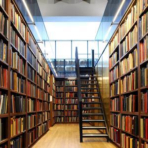 Библиотеки Онегы